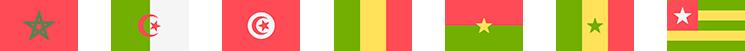 flags 1-Appels d'offres et marchés publics